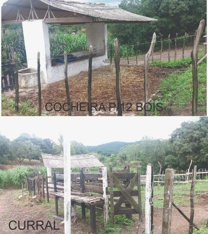 Sitio, Chácara - Foto 4