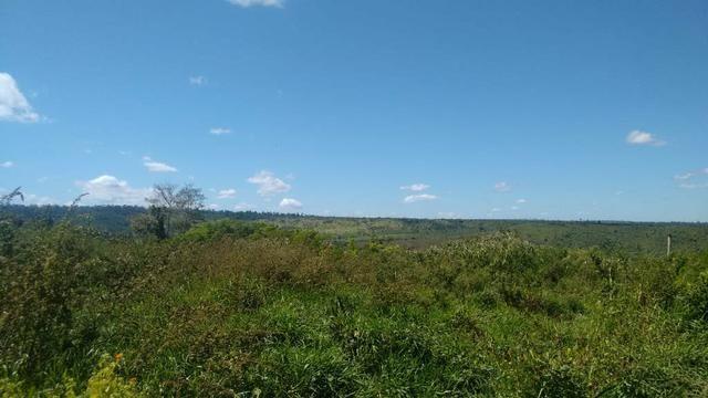 FAZENDA COM 1247 HECTARES / 800 hectares em pastagem abertas - Foto 4