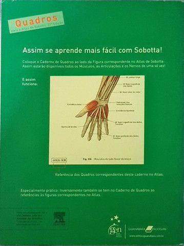 Sobotta - Coleção (3 volumes)
