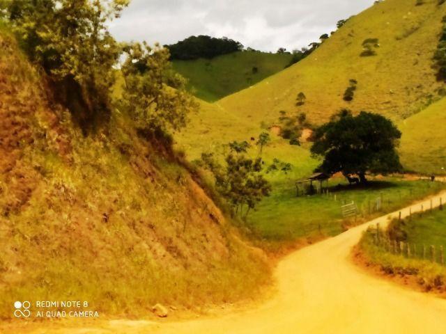 Vendo Fazenda com 27,5 Hectares em Rio Calçado - Guarapari - Foto 16