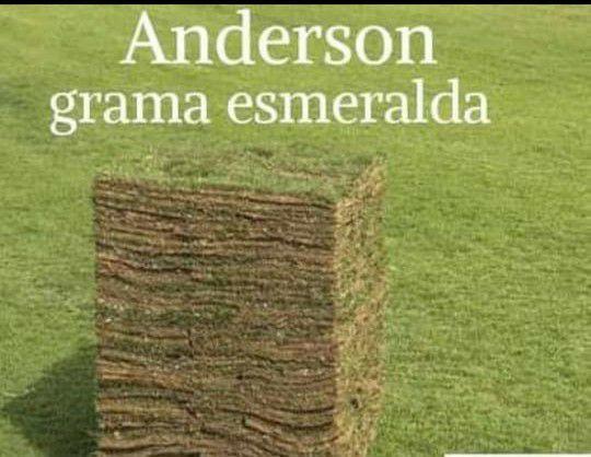 Gramas Esmeralda 100m2 por R$1000