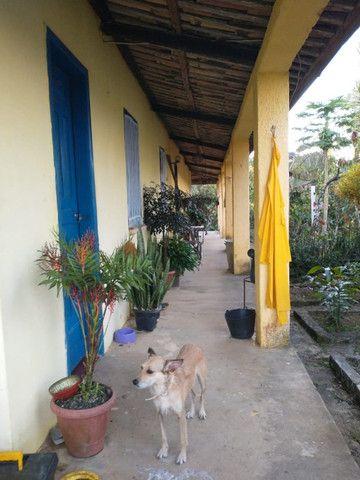 Fazenda  área 100 ha  lavoura maior parte de cacau,  Casa 4/4  escriturada - Foto 8