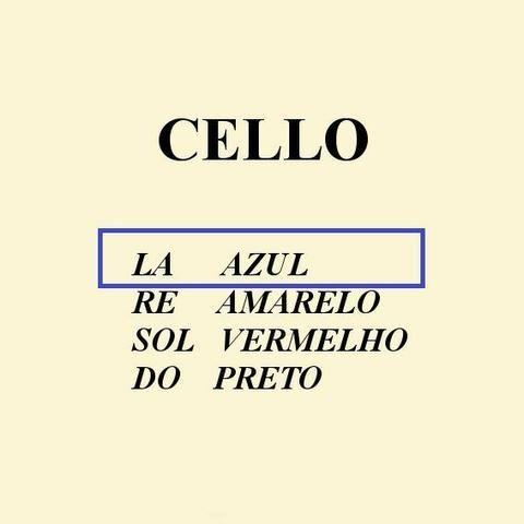 Jogo Cordas Mauro Calixto Violoncelo Cello Encordoamento 4/4