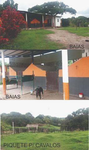 Sitio, Chácara - Foto 11