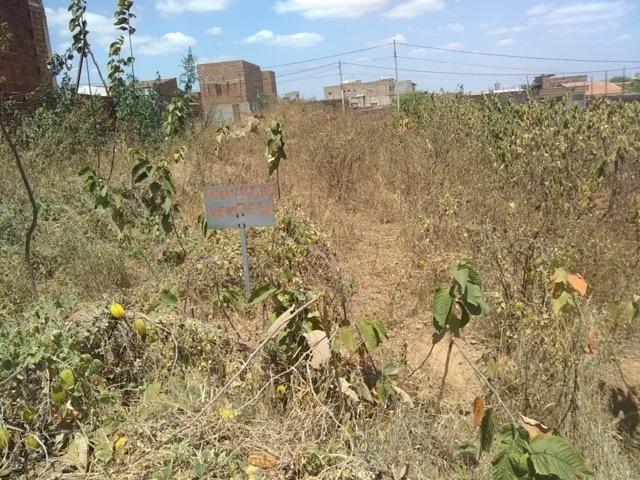 Vende-se terreno em toritama - Foto 4
