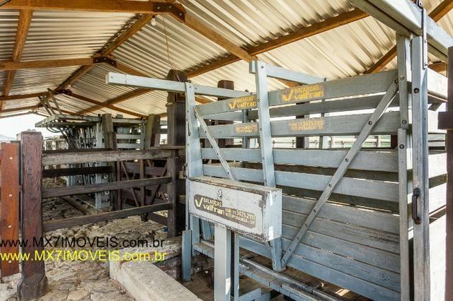 Fazenda pecuária de 6.400 Hectares. Capacidade pra 8.000 bois. - Foto 15