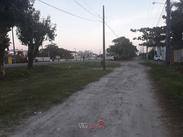 Terreno murado e aterrado de frete para a rodovia - Foto 6