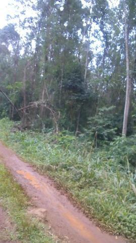 Vendo chacara 10 hectares - Foto 6
