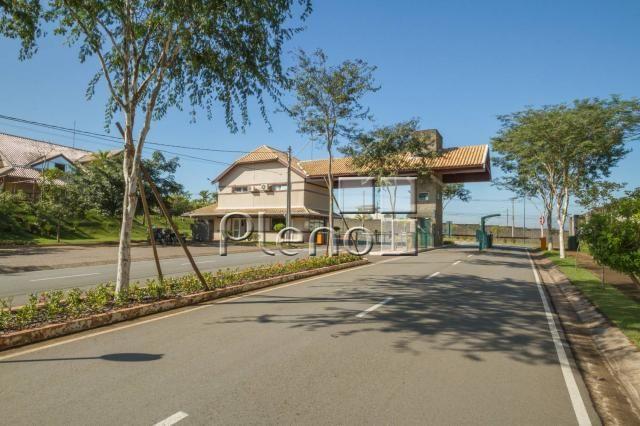 Terreno à venda em Swiss park, Campinas cod:TE025455 - Foto 10