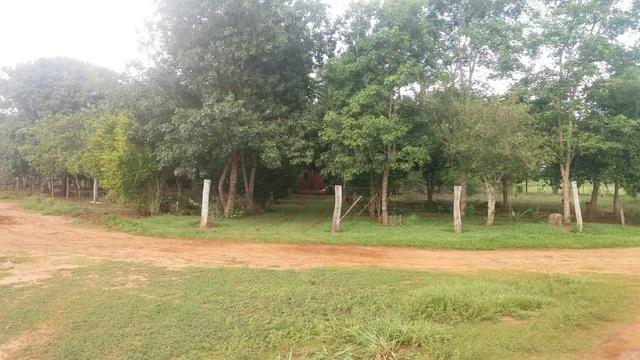 Chacara 2 hectares lazer - Foto 6