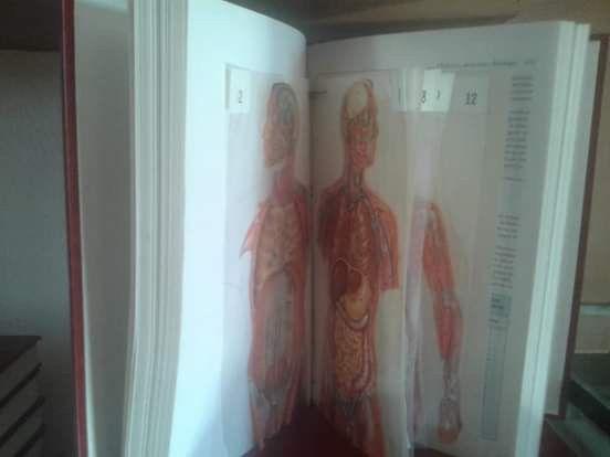 Coleção de livros enciclopédia Barsa - Foto 3