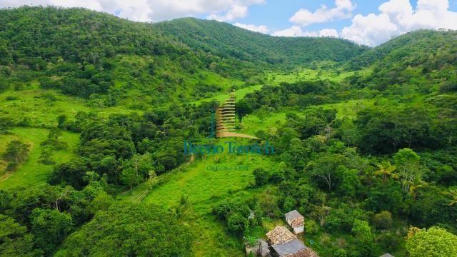 Fazenda à venda, 1258400 m² por R$ 910.000,00 - 17km de Teófilo Otoni - Teófilo Otoni/MG - Foto 15