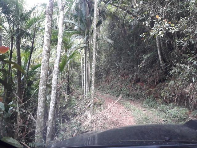 Sitio em Toca da onça,Lumiar,Nova Friburgo - Foto 8