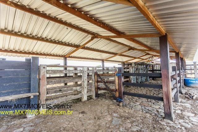 Fazenda pecuária de 6.400 Hectares. Capacidade pra 8.000 bois. - Foto 14