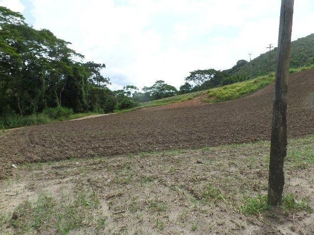 154 - Área de terra em Providência - Foto 11