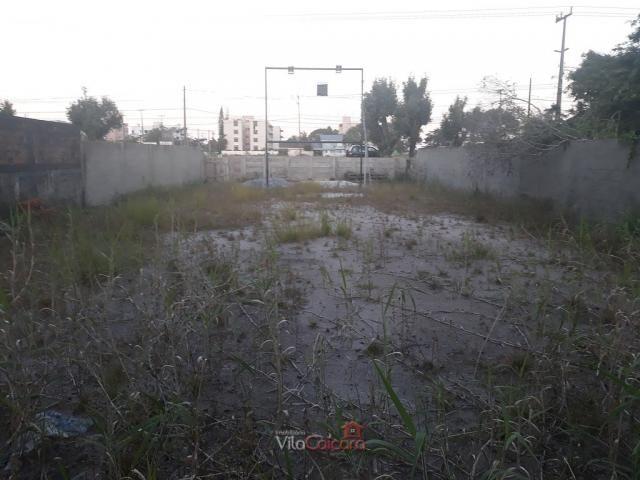 Terreno murado e aterrado de frete para a rodovia - Foto 4