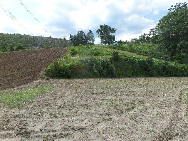 154 - Área de terra em Providência - Foto 3
