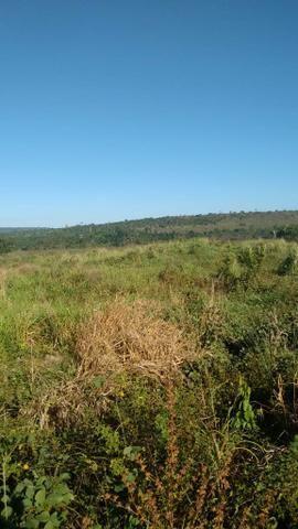 FAZENDA COM 1247 HECTARES / 800 hectares em pastagem abertas - Foto 6