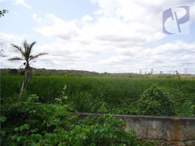 Fazenda rural à venda, Zona Rural, Pacatuba - FA0001. - Foto 6