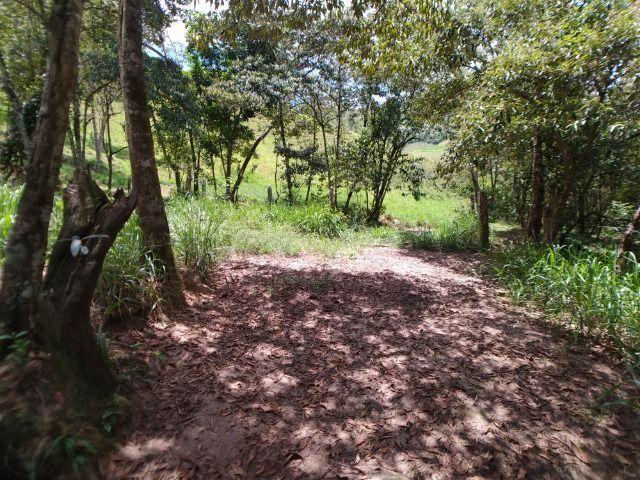 Vendo Fazenda com 27,5 Hectares em Rio Calçado - Guarapari - Foto 20