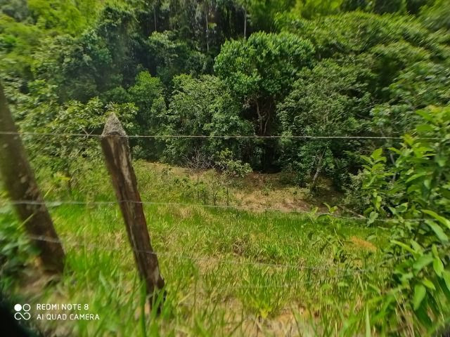 Vendo Fazenda em Rio da Prata - Distrito de Guarapari - Foto 9