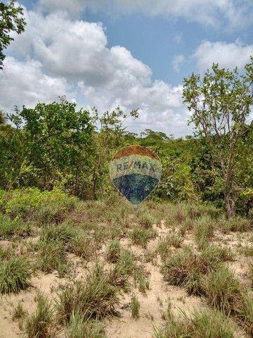Chácara em Gurugi / Jacumã - Conde PB - Foto 4