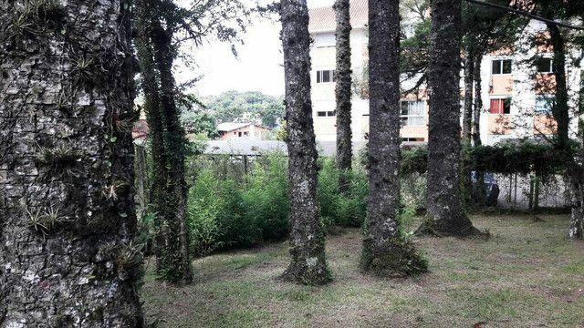 Terreno - Bairro Centro - Foto 4