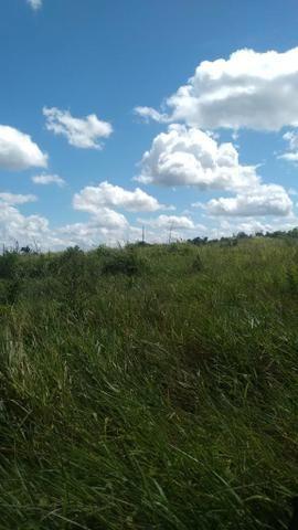 FAZENDA COM 1247 HECTARES / 800 hectares em pastagem abertas - Foto 5