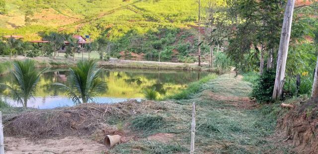 Vendo Sitio - 20.000m² - Córrego da Puaia/Colatina - 4km do bairro Columbia - Foto 4