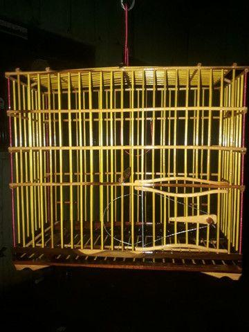 gaiolas preseiras - Foto 3