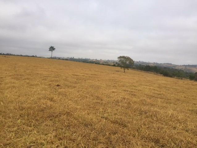 Fazenda 20 - Foto 4