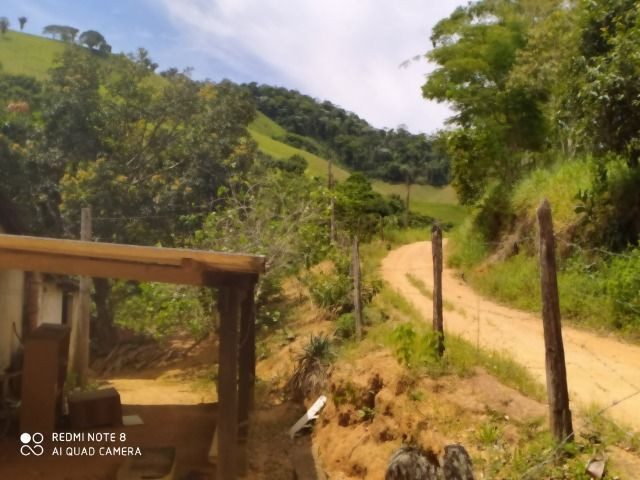 Vendo Fazenda em Rio da Prata - Distrito de Guarapari - Foto 15