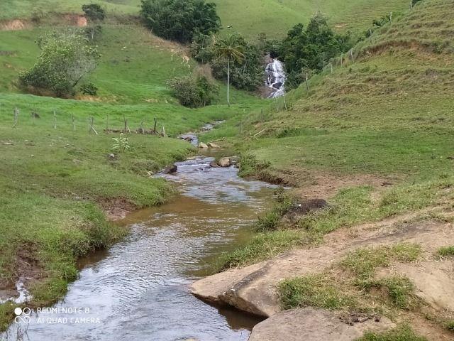 Vendo Fazenda com 27,5 Hectares em Rio Calçado - Guarapari - Foto 12