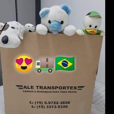 Ale transportes mudanças para todo Brasil - Foto 5