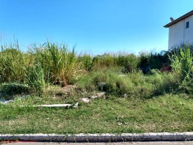 Excelente terreno todo murado com 450m² em área nobre, rua asfaltada, terreno com frente p - Foto 6