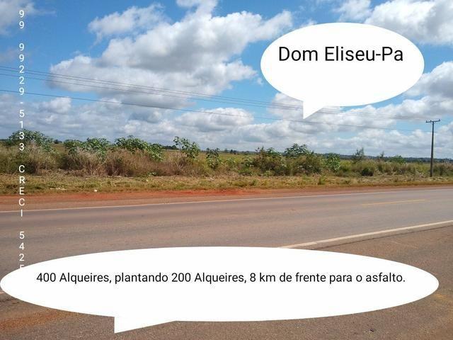 Fazenda em Dom Eliseu, 400 Alqueires, com 200 de soja. (soja )
