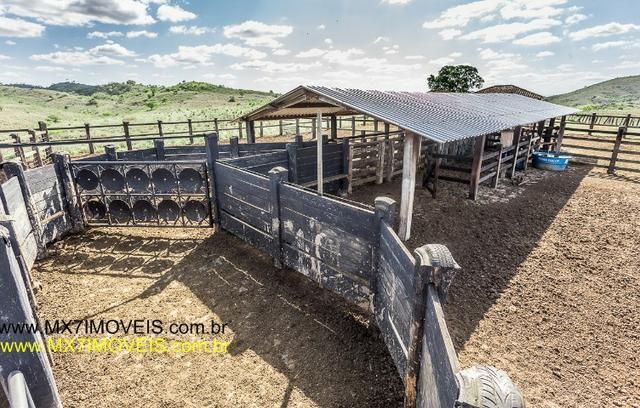 Fazenda pecuária de 6.400 Hectares. Capacidade pra 8.000 bois. - Foto 13