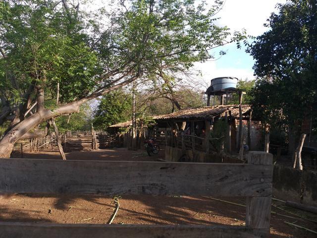 Vende-se uma fazenda - Foto 7