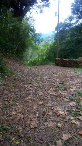 Vendo chacara 10 hectares - Foto 5