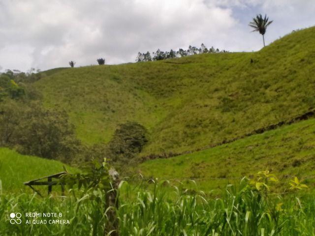 Vendo Fazenda em Rio da Prata - Distrito de Guarapari - Foto 4