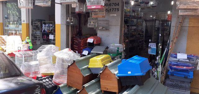 Loja agropecuária e artigos de pesca - Foto 2