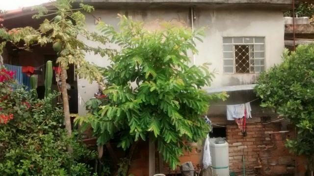 Casa à venda com 3 dormitórios em São josé, Belo horizonte cod:1251 - Foto 4