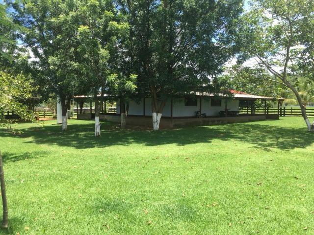Fazenda Rosario Oeste 50 km fora asfalto 782 ha R$ 3 mi - Foto 2