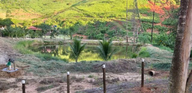 Vendo Sitio - 20.000m² - Córrego da Puaia/Colatina - 4km do bairro Columbia - Foto 5
