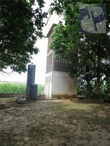 Fazenda rural à venda, Zona Rural, Pacatuba - FA0001. - Foto 8