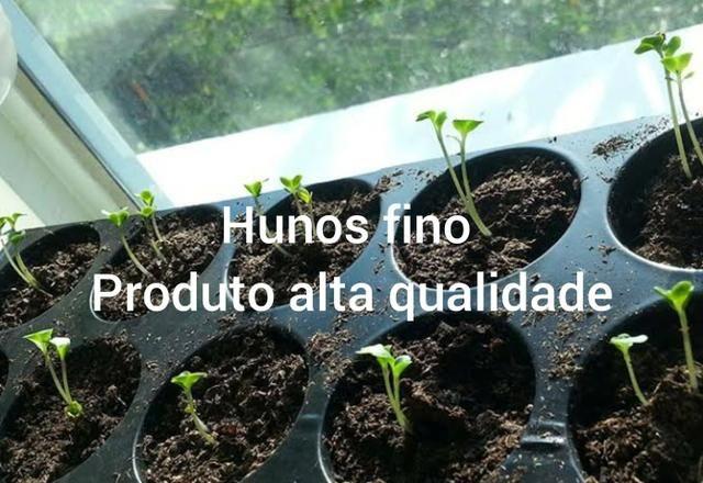 Vende se húmus adubo para plantar - Foto 2