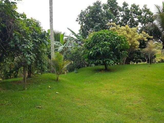 Sitio a venda em Andana-Guarapari ES com 2 - Foto 4