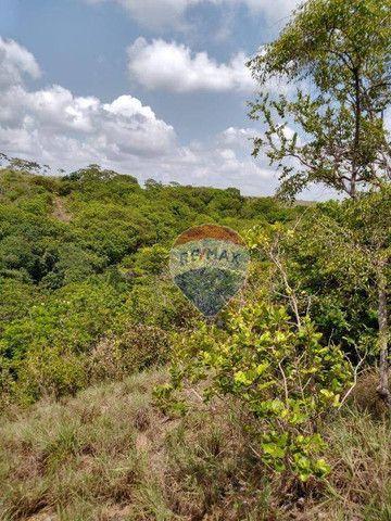 Chácara em Gurugi / Jacumã - Conde PB - Foto 3