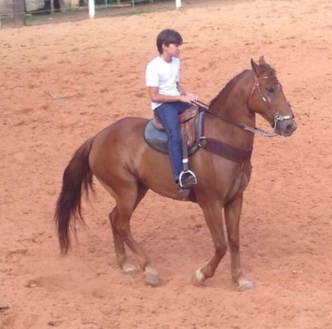 Atividades com cavalos para pessoas especiais