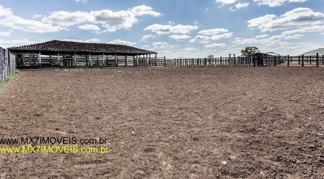 Fazenda pecuária de 6.400 Hectares. Capacidade pra 8.000 bois. - Foto 11